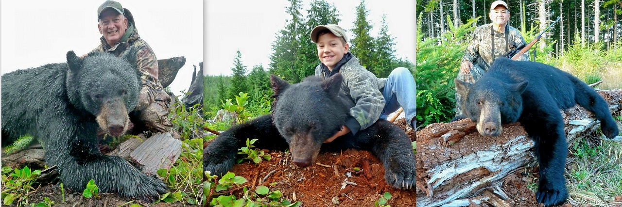 black bear hunting on the olympic peninsula